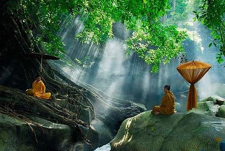 Orientar la ciencia de la meditaci n - Un lugar para meditar ...
