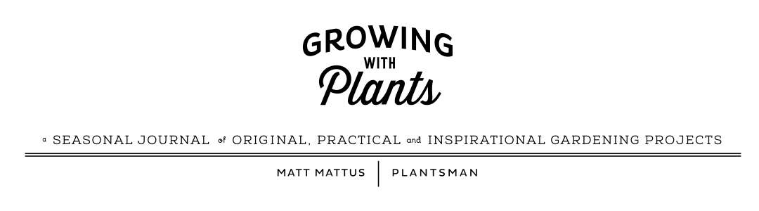 Growing with plants - seriously about plants