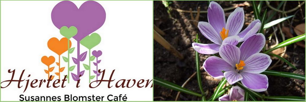 Susannes Blomster Café