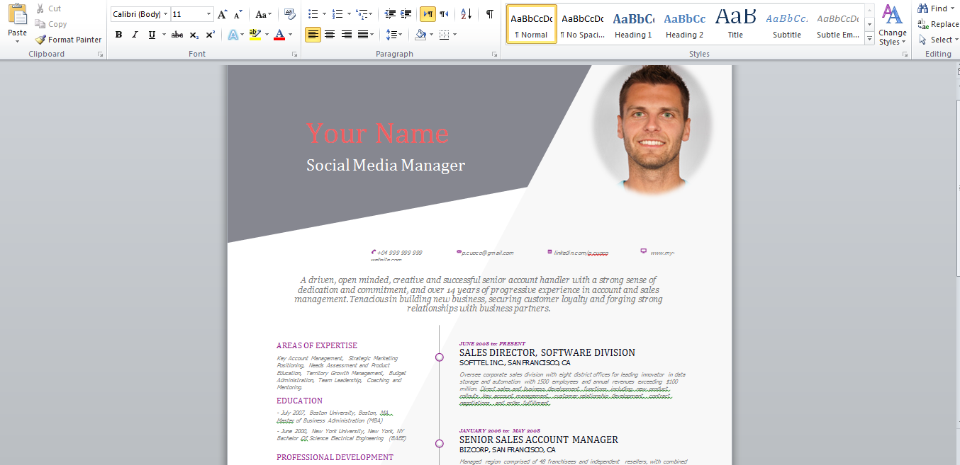 stagepfe docx free curriculum vitae 2015 template