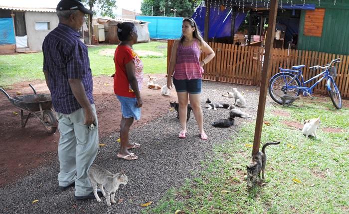 Voluntários se unem para manter serviço da Associação de Animais