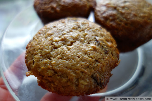 http://www.farmfreshfeasts.com/2013/02/orange-cherry-oatmeal-muffins-monday-or.html