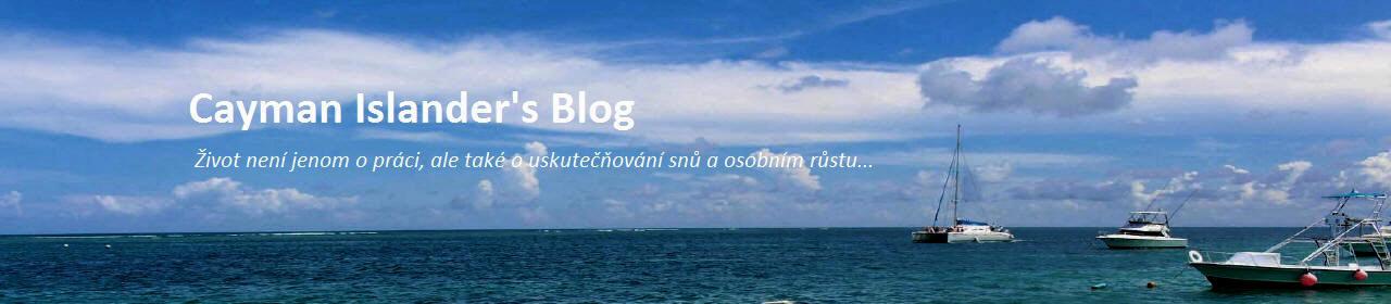 Cayman Islander's blog - Diary of Freelance Programmer