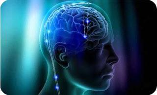 A Evolução do Conceito de Inteligência