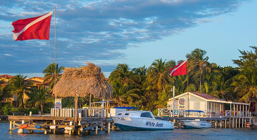Today's  News for White Sands  Dive Shop at        San Pedro Ambergris Caye Belize
