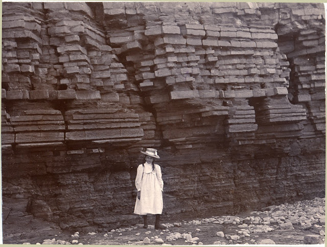 Lavernock Point. Lower Lias and Rhaetic shale. 1901. Photograph by S.H. Reynolds. From the British Association for the Advancement of Science photograph collection.