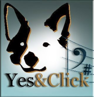 ¡Yes&Click! Una Actitud hacia el Adiestramiento Canino. Bienvenidos !!