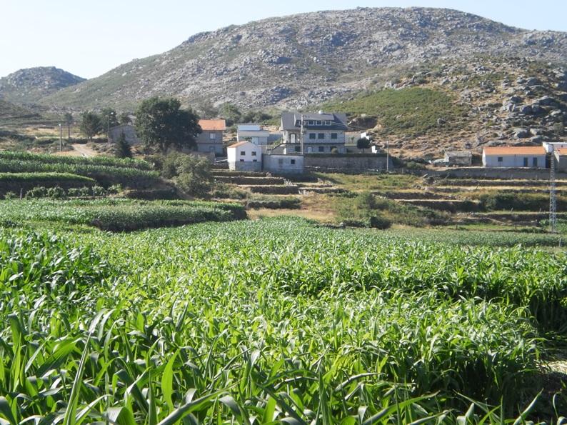 Casas de imigrantes na aldeia de Gestoso