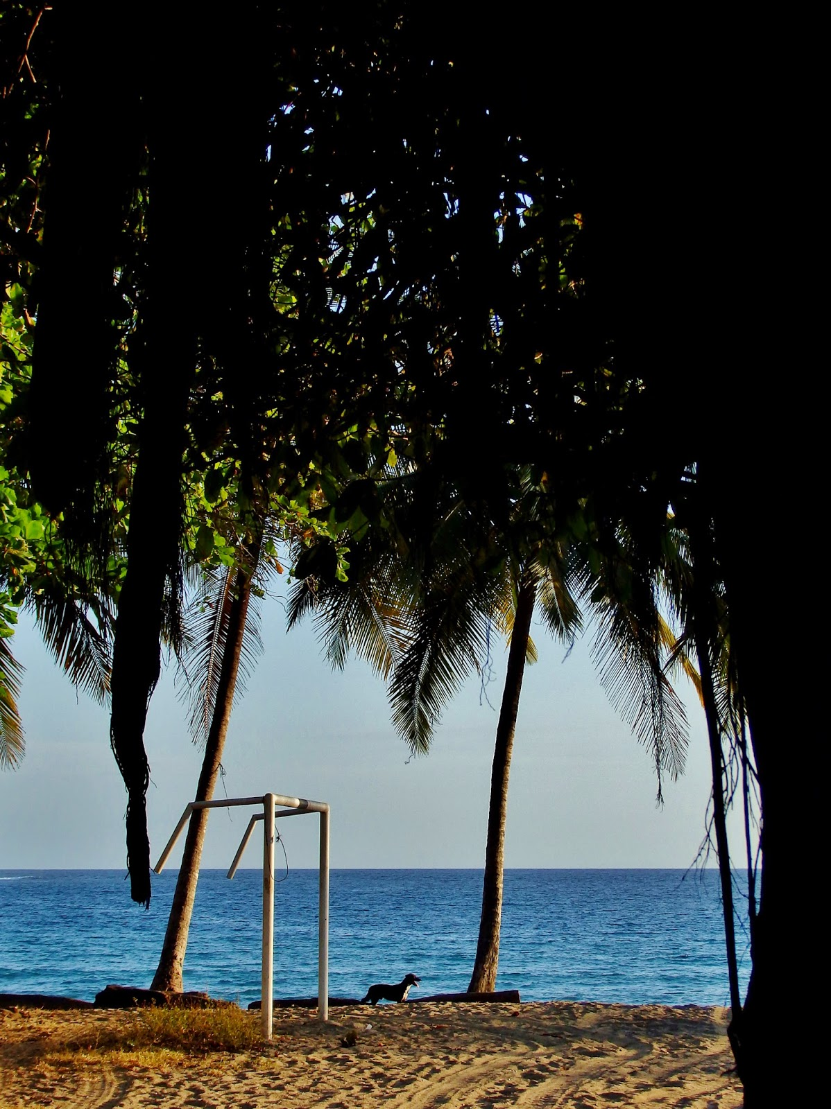 Playa Garza, Costa Rica.