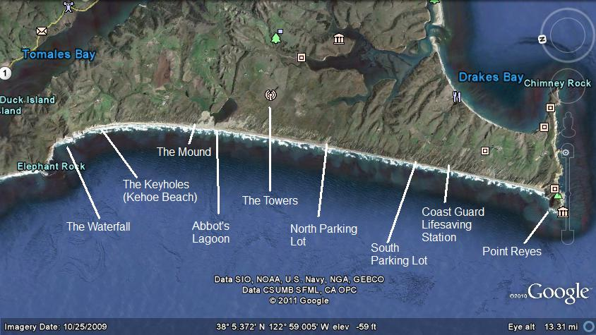 Lawson 39 s landing fishing report july 2013 for Tomales bay fishing report