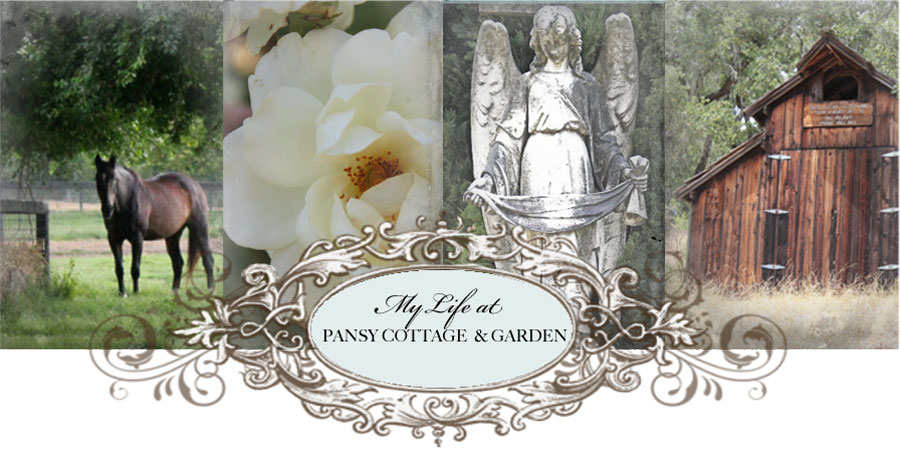 My Life at Pansy Cottage and Garden