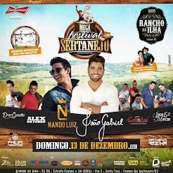 Mega Festival Sertanejo
