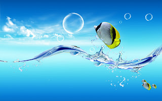 Water Life HD Wallpaper