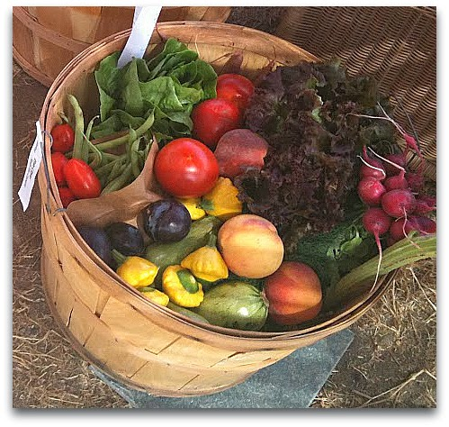 harvest basket of delicious organic produce