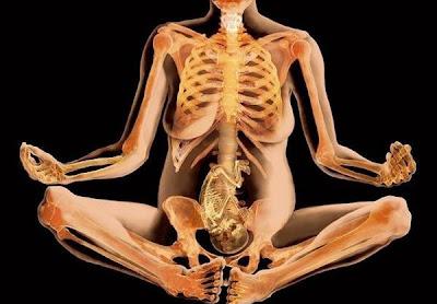 بالصور: جسم الانسان المذهلة بالأشعة السينية