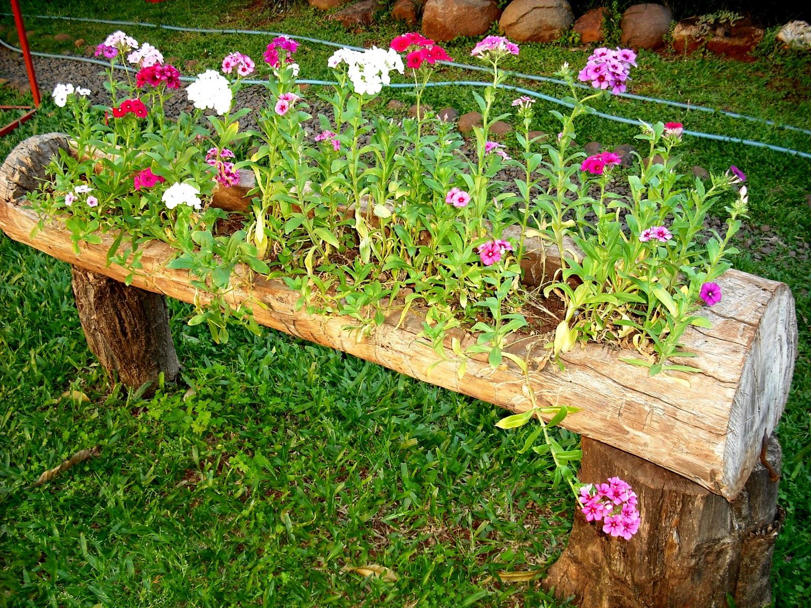 flores no jardim de deus : flores no jardim de deus:Postado por Silvia Belchor às 07:39