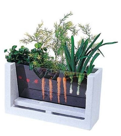 Brainstorm in bloom viewable planter watch the roots grow summer craft kit 2013