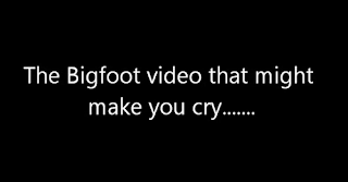 Tribute To Bigfooters Video