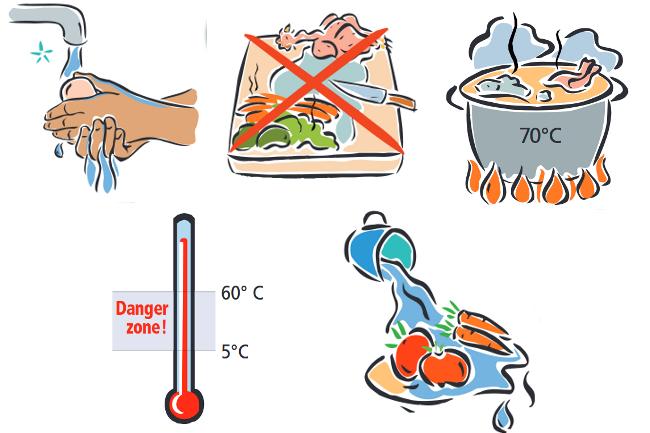 Bacterias for Cocinar para 5 personas