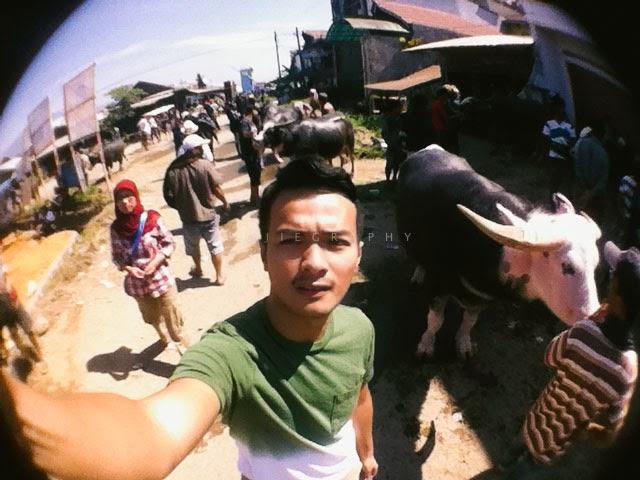Pengalaman Berkunjung ke Pasar Bolu Tana Toraja