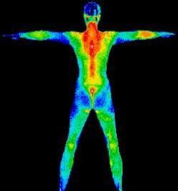 Photo infrarouge du corps huamain, montrant les zones centrales chaudes et les extremités froides.