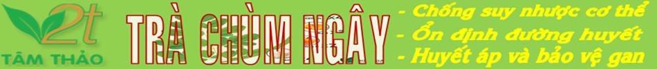 Trà Chùm Ngây | Trà Thảo Dược | Moringa Tea