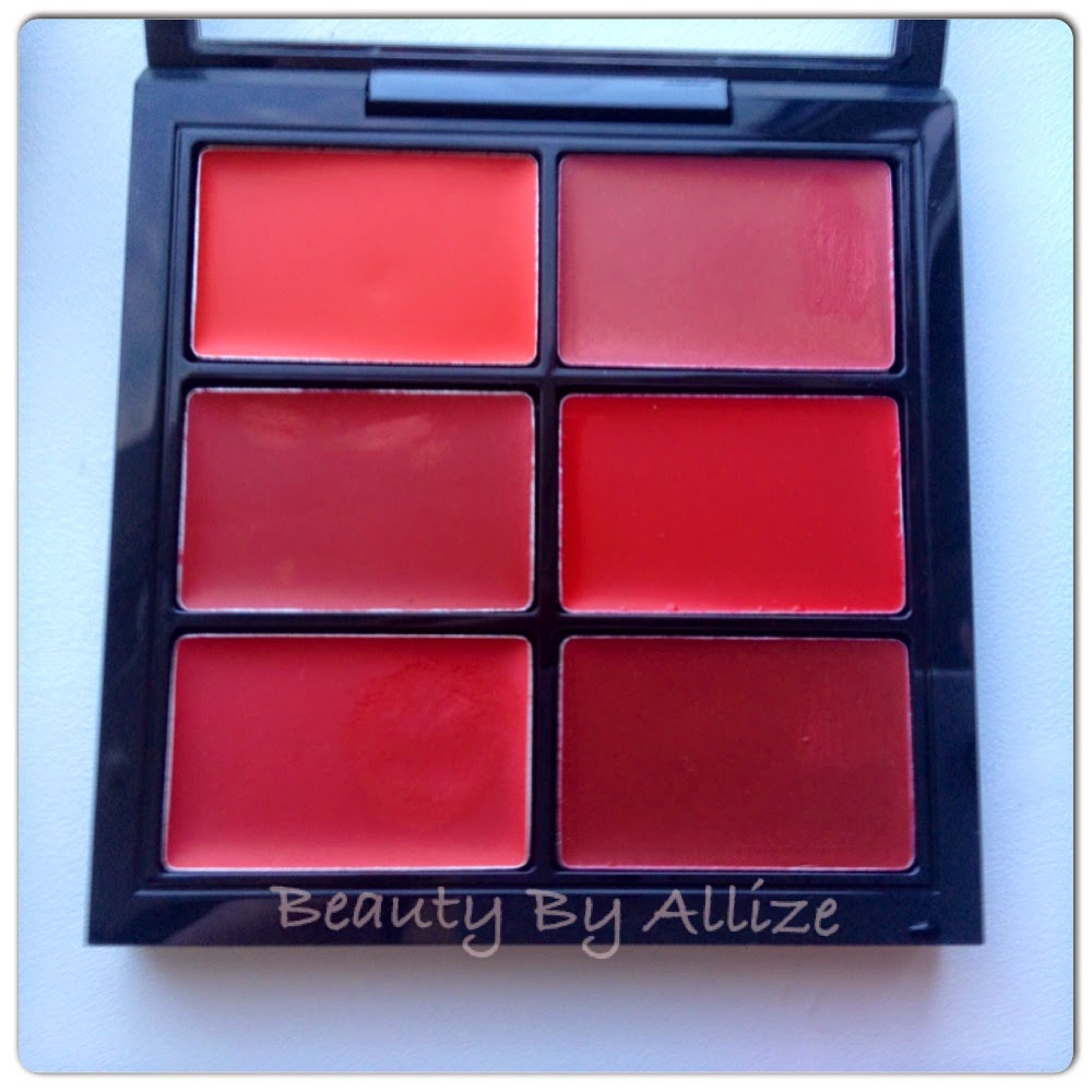 PRO Lip Palette ,Lady Danger, Russian Red, Ruby Woo, On Hold, Mac Red, Dare You
