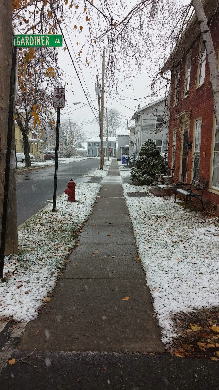 Snow in front of 46 King St., Brockport, NY 11/17/14