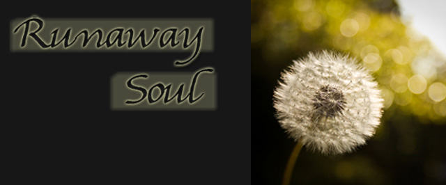A Runaway Soul