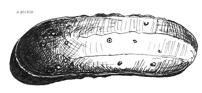641 Things to Draw - A Pickle - Pen and Ink ©2012 Ana Tirolese