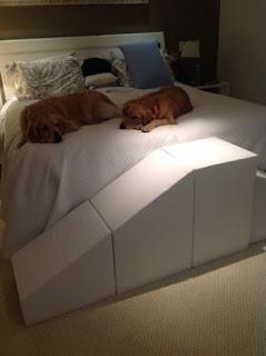 escadas e rampa para cães de grande porte