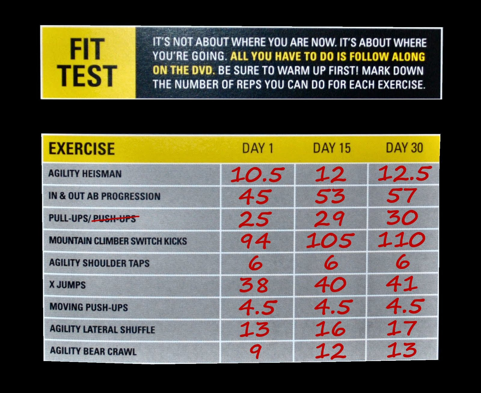 insanity workout fit test pdf