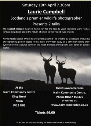 Wildlife photography talks
