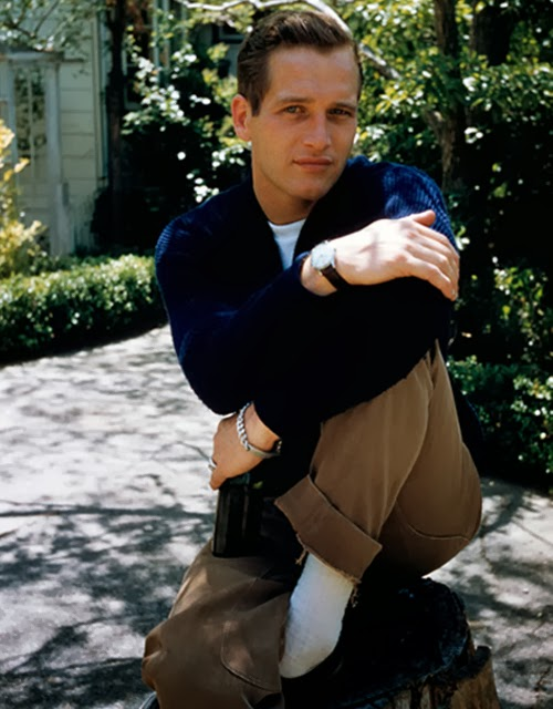 Paul Newman iconic image in navy sweater and khakis
