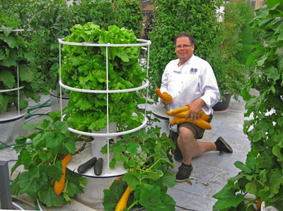 Grow Your Own Food With Vertical Gardens