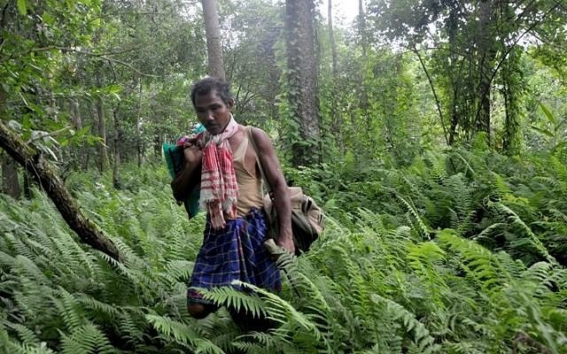 TARZAN, INDIA, Jadav, Molai, Payeng, hutan, forest, 30 tahun, 30 years