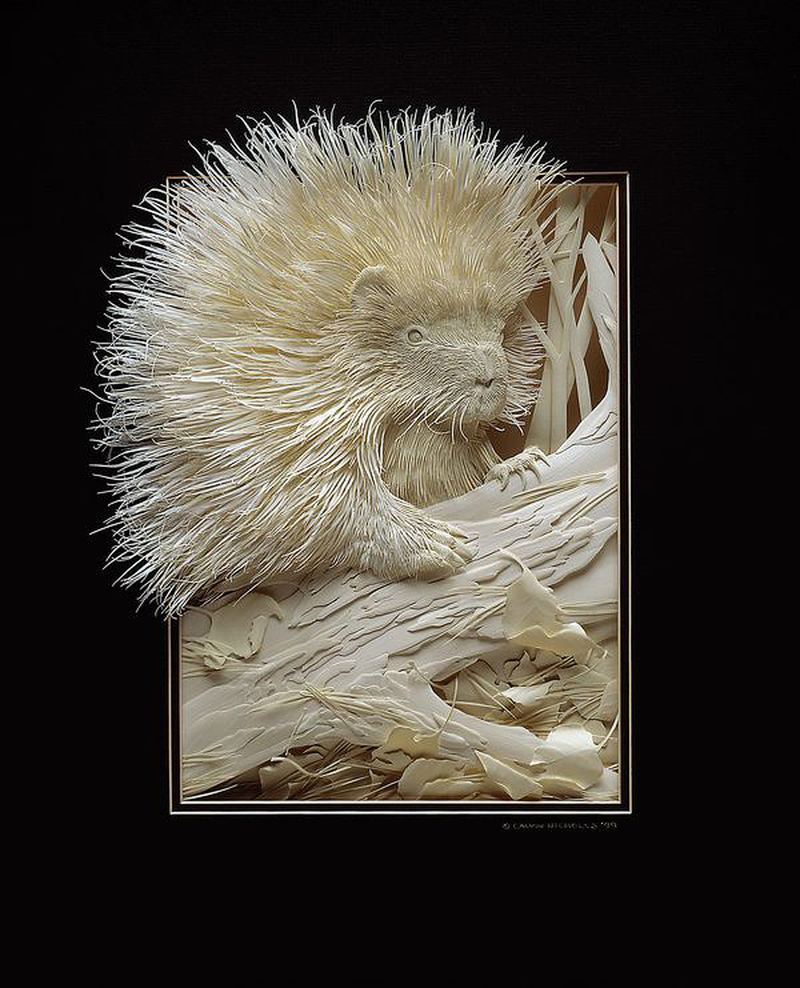 Simply creative amazing paper sculptures by calvin nicholls