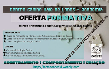 Oferta Formativa do CCVL Academia