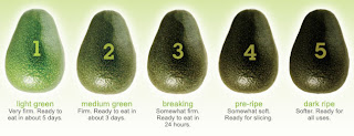 Avocado juice recipes healthy good for diet losing weight