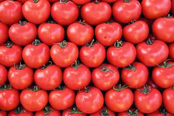 alimentación-tomates