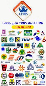 Loker CPNS BUMN 2013