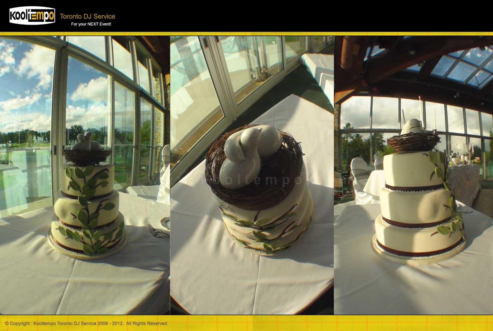 Cake Structure - Lionhead