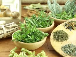Ahmet maranki akciğer kanseri için kür bitkilerle akciğer kanseri
