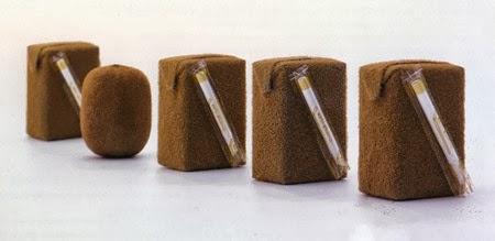 Naoto Fukasawa: il succo del design.