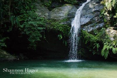 Shannon Hager Photography, Okinawa, Jungle, Fukugawa Falls