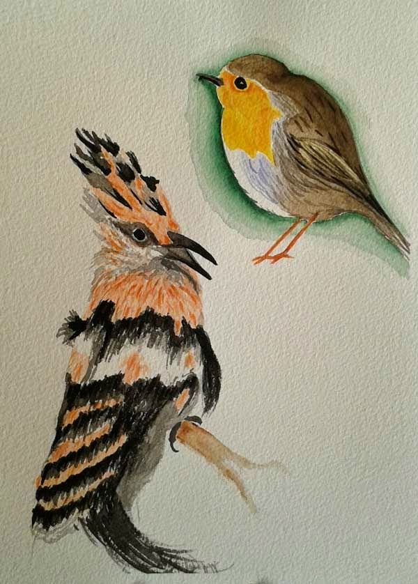 birds watercolor