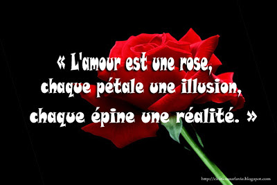Amour a vie