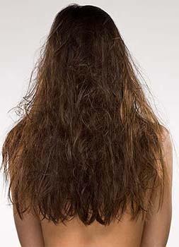 How To Repair Dry And Damaged Hair Mythirtyspot