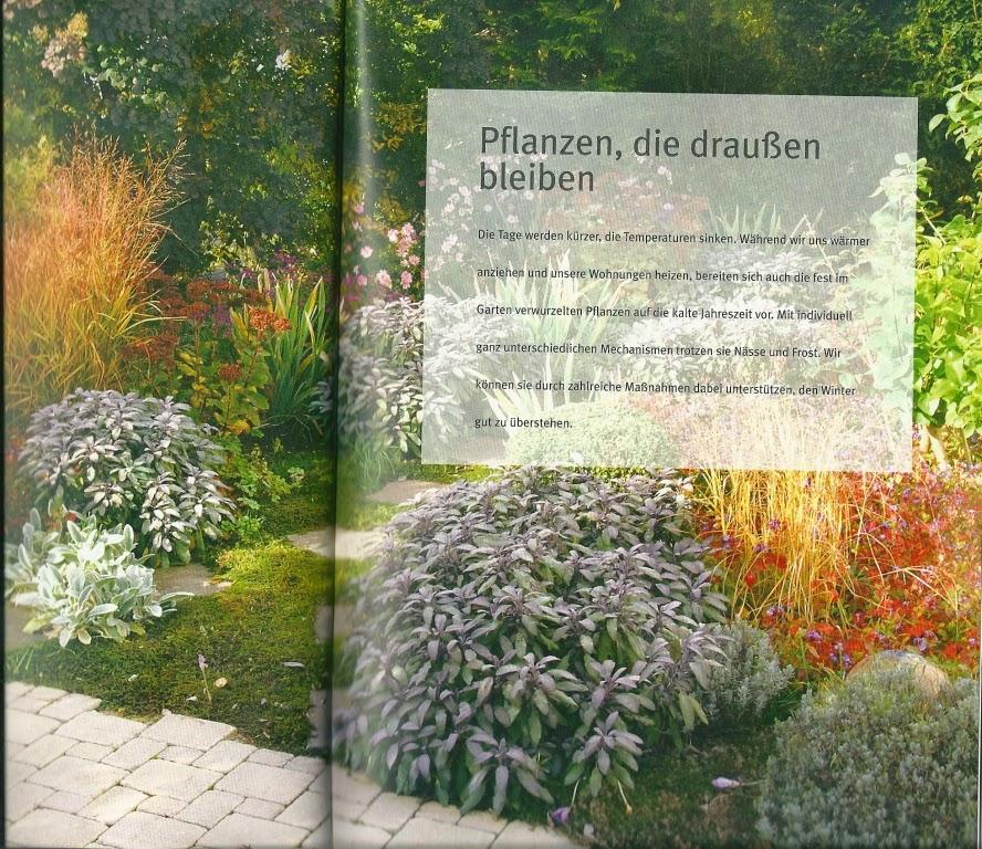 unser steiniger stadtgarten gartenpflanzen richtig berwintern buchempfehlung. Black Bedroom Furniture Sets. Home Design Ideas