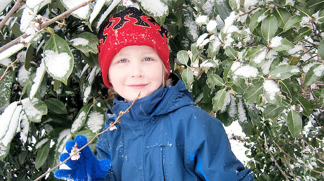 great snow photo with trees and boy
